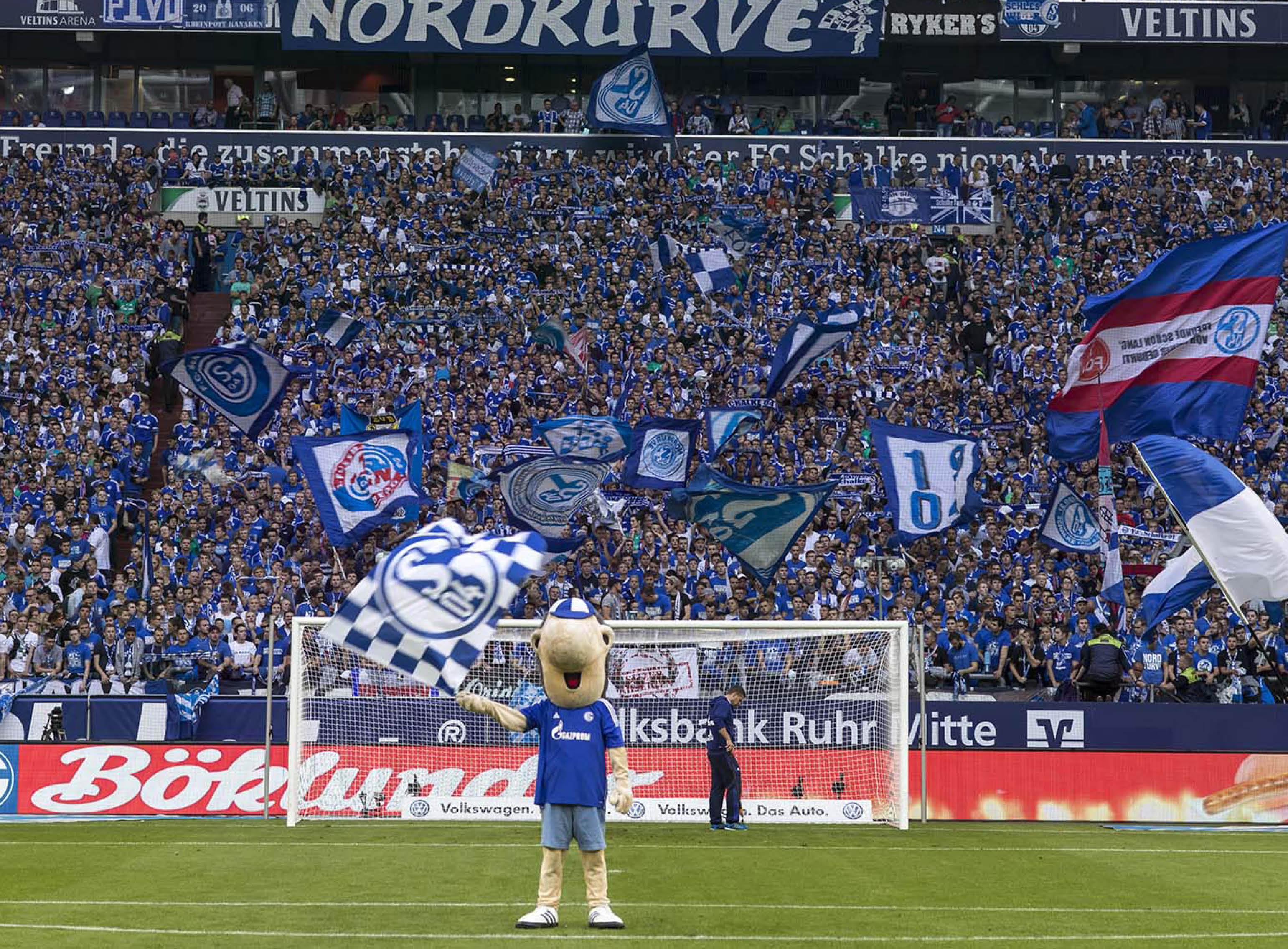 Schalke04 Erwin