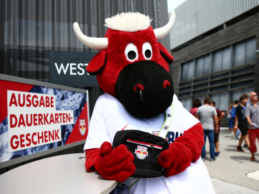 Red Bull Salzburg, Bullidibum